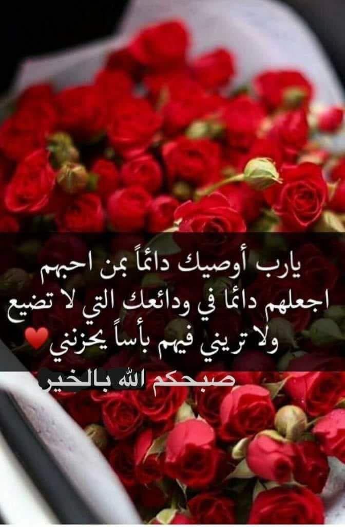 Pin By Sahiha Sham On صباح الخير Good Morning Good Morning Arabic Morning Love Quotes Good Night Messages