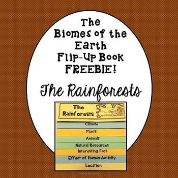 clutch bag for women This Biomes of the Earth Flip Up Book Freebie  The Rainforests is a FREEBIE SNEAK PEEK at my Biomes of the Earth Flip Up Book BUNDLE  The bundle includes EIGHT Flip Up Books  Included in the BUNDLE are Flip Up Books for The RainforestsThe OceansThe DesertsThe Deciduous ForestsThe GrasslandsThe MountainsThe Arctic TundraThe Tropical Savannas      This FREEBIE sample will supplement and enhance your unit on Biomes