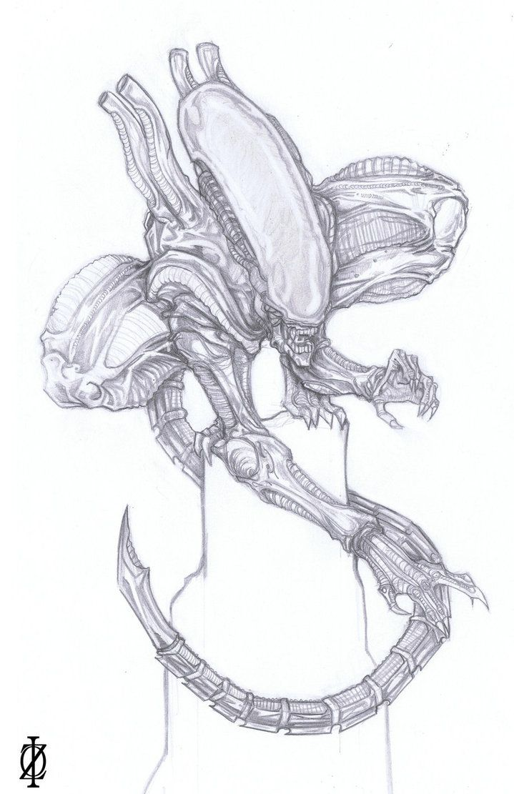 Step 4. The head now is like an Alien and the genestealer appereance dissapear when I draw the tail. FINISHED ART in fav.me/d2rjbbf