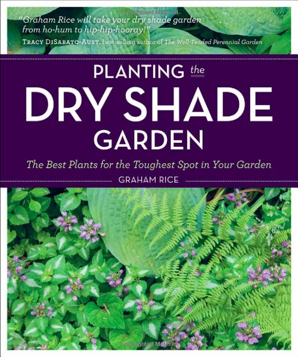 Flower Garden Ideas Shade 23 best perennials for shade and acidic soil images on pinterest