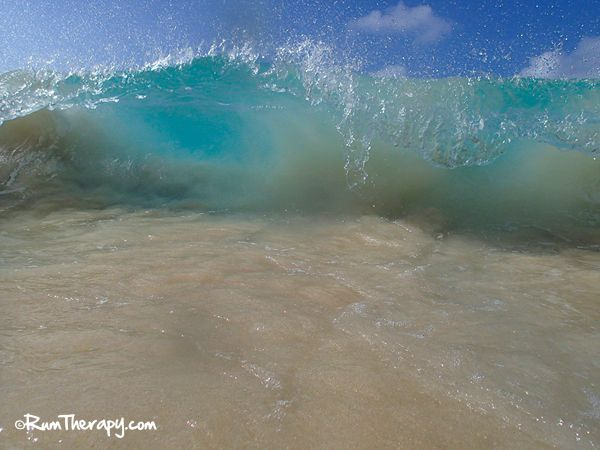 What we like about our sturdy little Olympus TG-1 Underwater Camera...