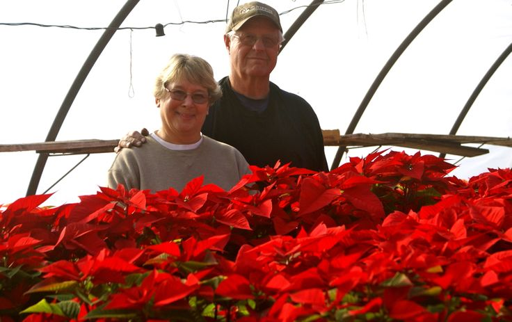 Mary and Raymond Smith owner's of Spring Garden Farms Inc.  Small family business since 1957.  Spring Garden Farms Inc.  1585 Main Street Birdsboro, PA 19508 610-582-8703 www.springgardenfarms.biz