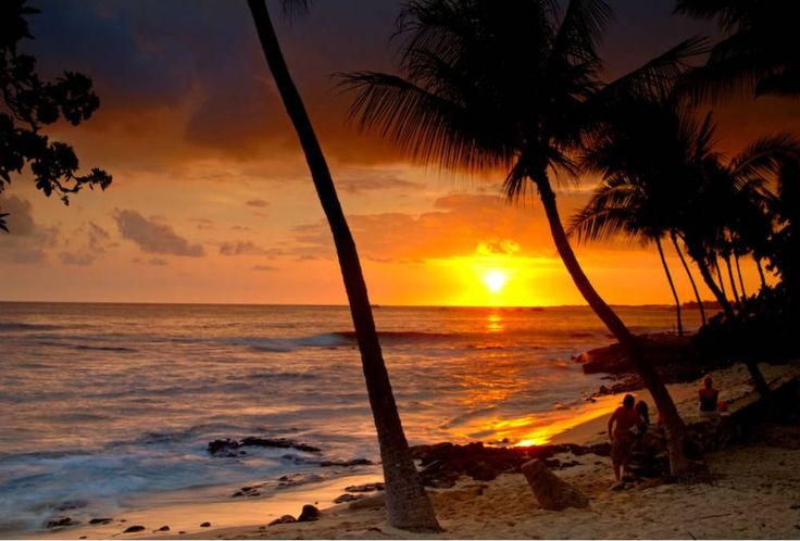 Hawaii   The Islands boast of the some of the world's most dramatic scenery including tropical rainforests, miles and miles of sandy beaches, gushing waterfalls and exotic flowers in abundance.