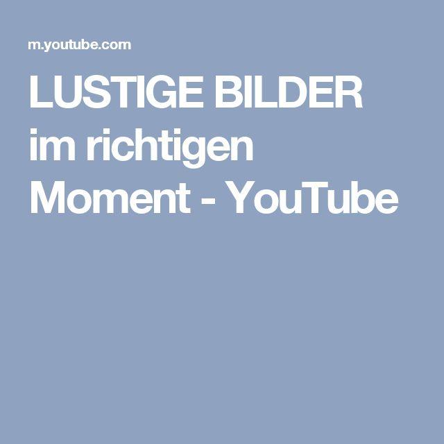 LUSTIGE BILDER im richtigen Moment - YouTube
