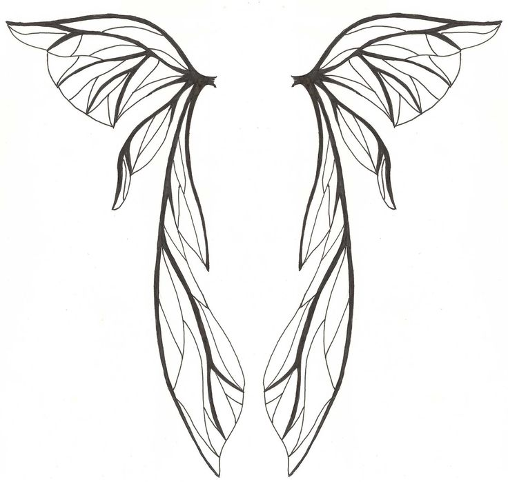 fairy wing pattern - Google Search