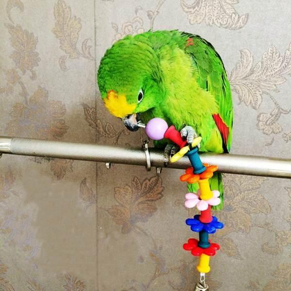 Bunte Hölzerne Kunststoff Hängevogelspielzeug Papageienkäfig Blumen Chewing Spielen Glocke
