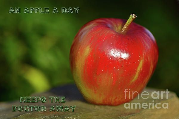 An #Apple A #Day by #Kaye_Menner #Photography Quality Prints Cards Products at: https://kaye-menner.pixels.com/featured/an-apple-a-day-by-kaye-menner-kaye-menner.html