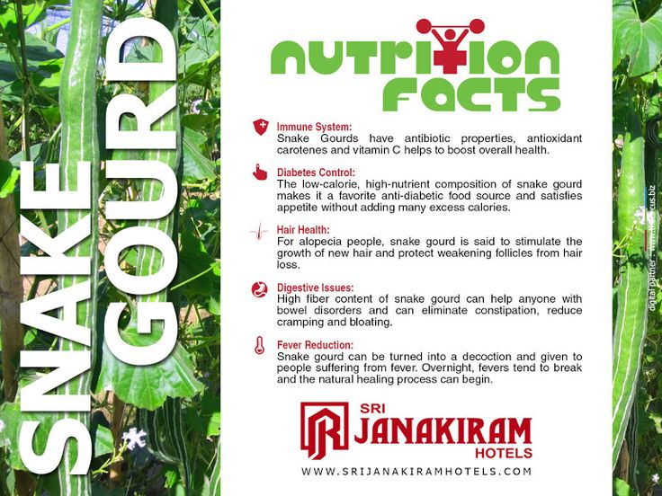 The Snake Gourd is one of the most interesting and delicious gourds to grow in your garden with lots of healthy benefits. Lets know some valuable info about it.  #srijanakiram #snakegourd #nutritionalfacts
