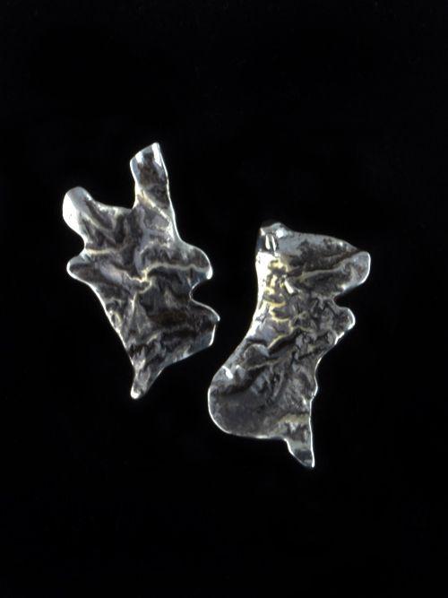 Silver Reticulation
