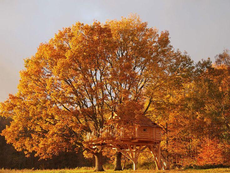 La Cabane Perchée:http://www.vogue.fr/voyages/hot-spots/diaporama/cabanes-dans-les-arbres-hotels-haut-perches/15768/image/873024