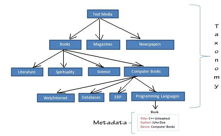 ecm taxonomy example - Google Search taxonomy versus ...