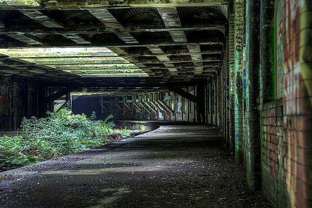 Hidden Station (UK) July 2012 by lost-in-time-ue.nl, via Flickr Glasgow Botanic Gardens Station