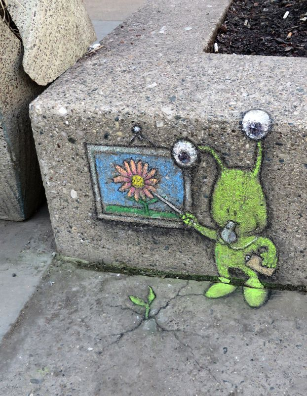 chalk street art by artist david zinn