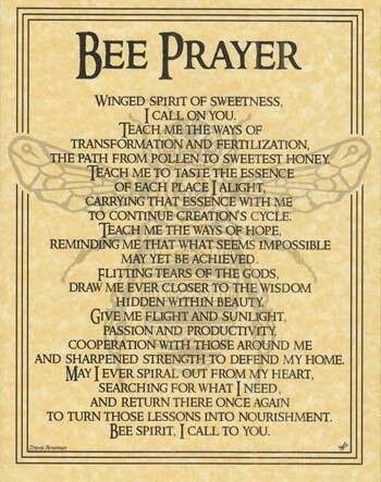 """This parchment poster offers a prayer to the spirit of the Bee, celebrating the noble spirit of this tiny, yet vital, creature and all that it has to teach us. Size: 8 1/2"""" x 11"""""""
