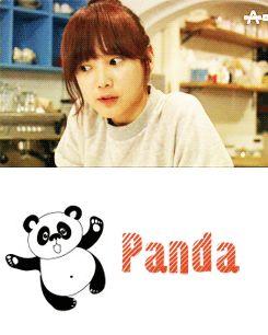 panda and the hedgehog <3 Yoon Seung-Ah as Pan Da-Yang