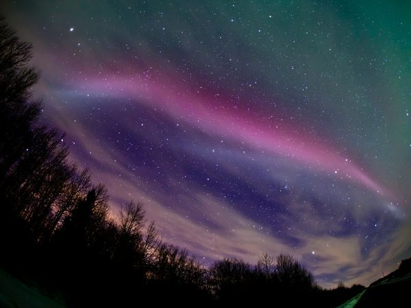 The aurora borealis—or northern lights—appears as ribbons of purple and pink in a picture taken just north of Edmonton, Canada