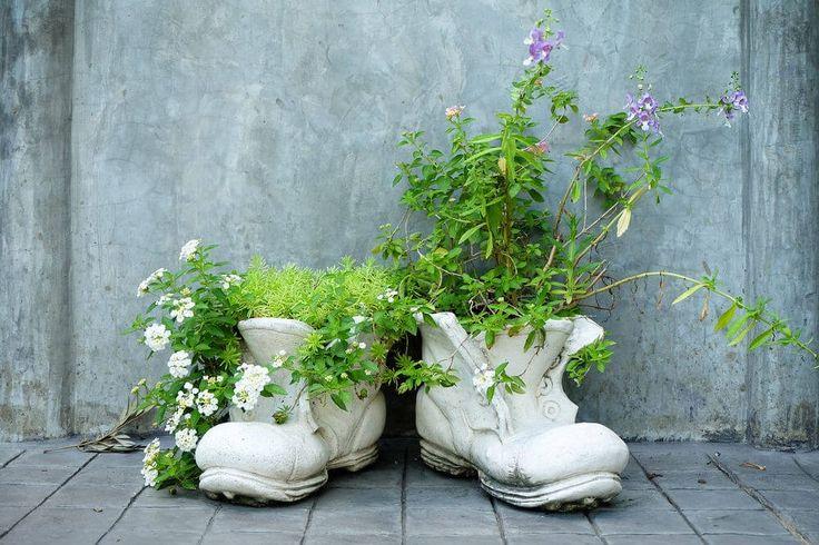 Dies sind die Schuh-Pflanzer in komplett weiß, jede holding eine Vielzahl von Pflanzen – von Blumen und Reben zu Kräutern gemalt.
