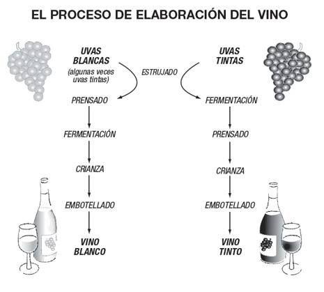 Sabías que la única diferencia entre la elaboración de un vino tinto y un vino blanco es que para el tinto las uvas se prensan después de la fermentación y en el blanco después de ésta? Esto y más podrás aprender en nuestra Escuela de Vinos. Visita nuestro calendario de cursos aquí: http://bit.ly/2zpDSbA