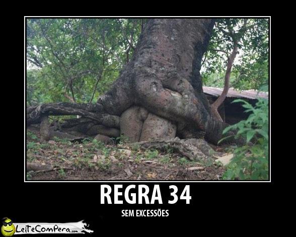 Regra 34: Árvores