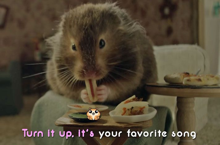 Hungry Hamster Feasts On Miniature Meals In Katy Perry Music Video:https://www.petcha.com/tiny-hamster-eats-miniature-meals-in-katy-perry-music-video-trending/