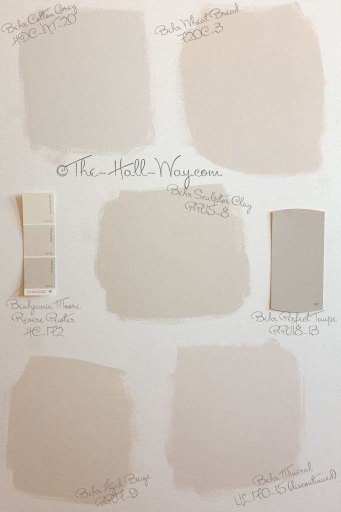 Paint Color Options   Behr Cotton Grey  Wheat Bread  Sculptor Clay  Aged  Beige and Mineral shown with BM Revere Pewter and Behr Perfect Taupe. 81 best behr paint images on Pinterest   Colors  Behr paint colors