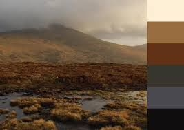 Turfprojects.ie Irish Landscape Mount Leinster Carlow Ireland Colour Palettes Inspiration