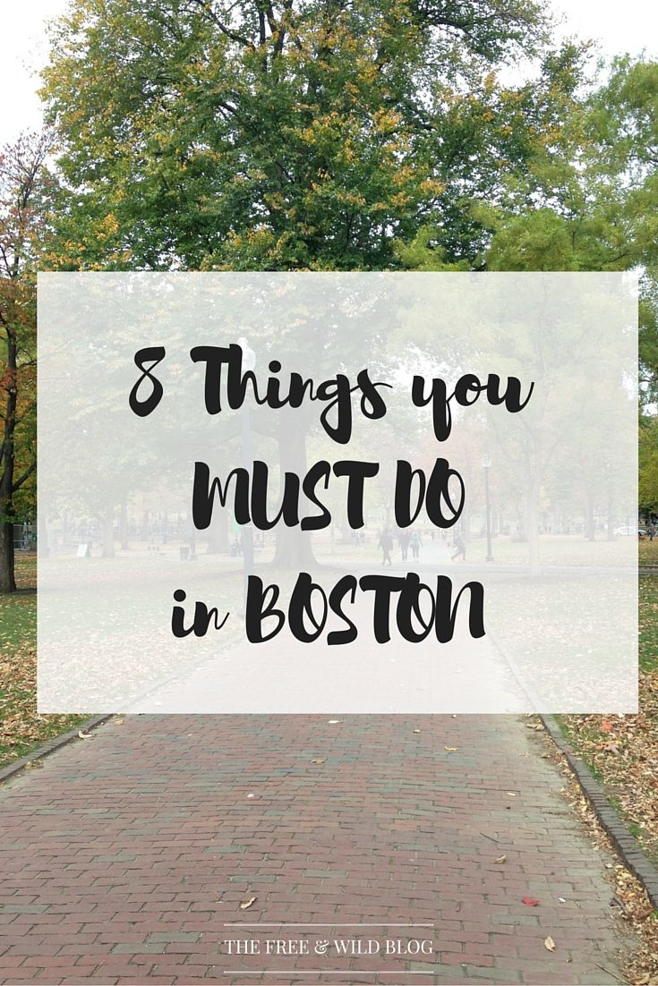 8 Things to Do in Boston, MA — The Free & Wild Blog