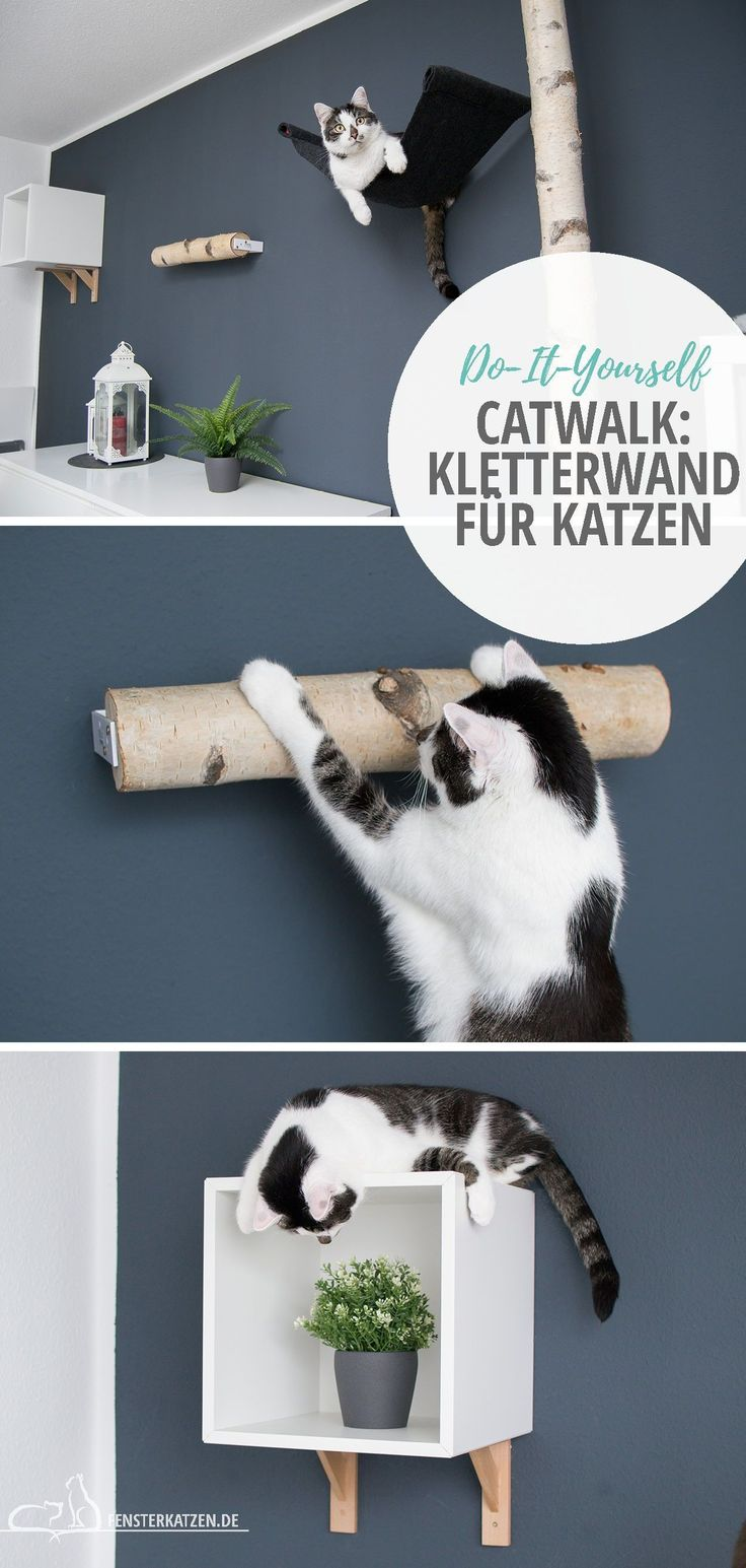 DIY CATWALK – KLETTERWAND FÜR KATZEN   DIY Catwalk – Kletterwand ...