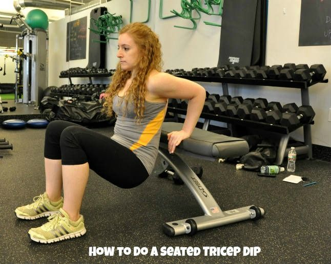 The 25+ best Tricep dips ideas on Pinterest | Weight training ...