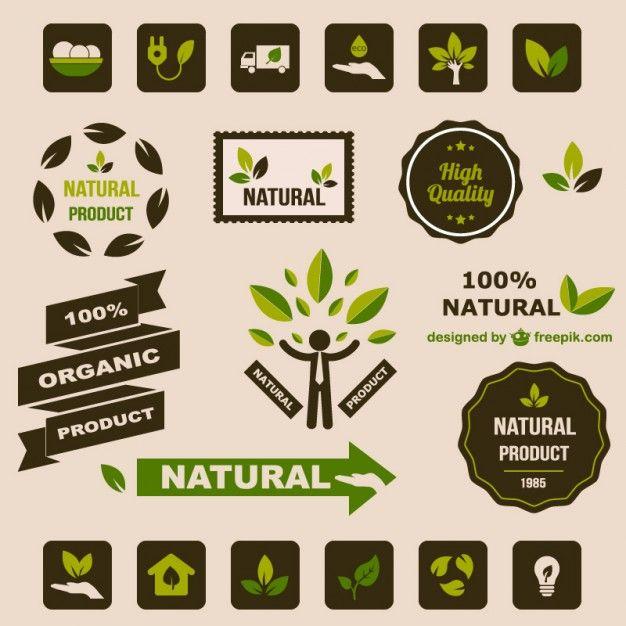 éléments graphiques rétro plat de l'écologie