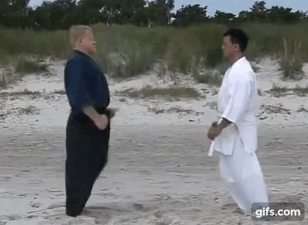 The four basic entries in Kishimoto-Di (a rare Okinawan karate style): outside over the arm, inside under, inside over, and outside under.