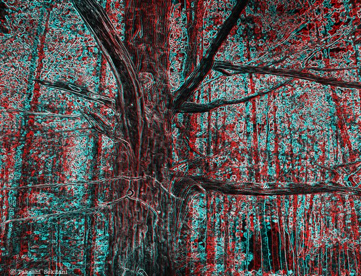PARTICLES - Dead tree (3D - anaglyph)