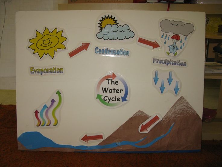 how to make water cycle model project