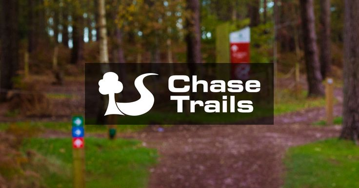 Mountain bike trails on Cannock Chase in Staffordshire, England. Includes Follow the Dog, The Monkey Trail, and Stile Cop Downhill Mountain Bike park.