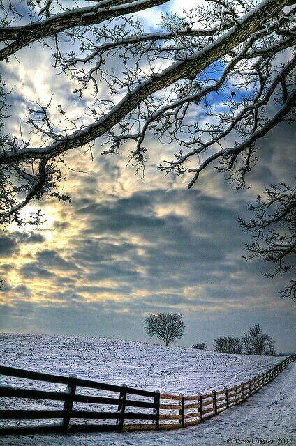 Bello paisaje de #invierno