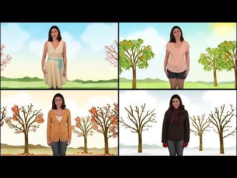 ▶ Let's Learn About the Four Seasons - Spring, Summer, Fall, and Winter - YouTube