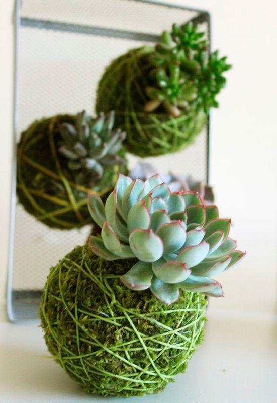 92 best Jardin images on Pinterest Beautiful, Deko and Driftwood - mini jardin japonais d interieur