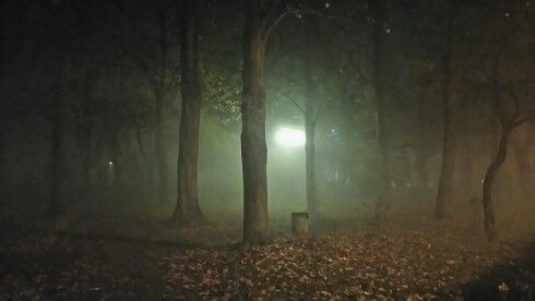 How you feel walking in the dark alone?  If you have a family whatever you do they will be with you... Remember it if you are scared of life...