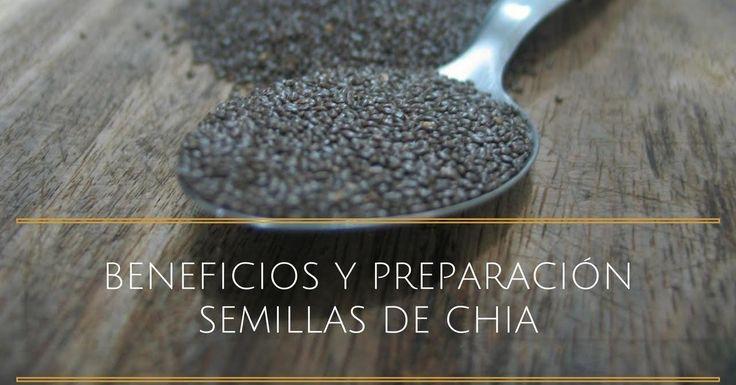 Propiedades y uso de las semillas de Chía para estar más guapas
