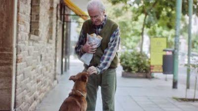 """The man and the dog"""", un spot que nos muestra la importancia de la donación de órganos, a través de la relación entre una persona y su mascota."""
