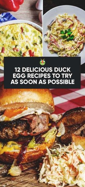 12 Delicious Duck Egg Recipes to Try As Soon As Possible
