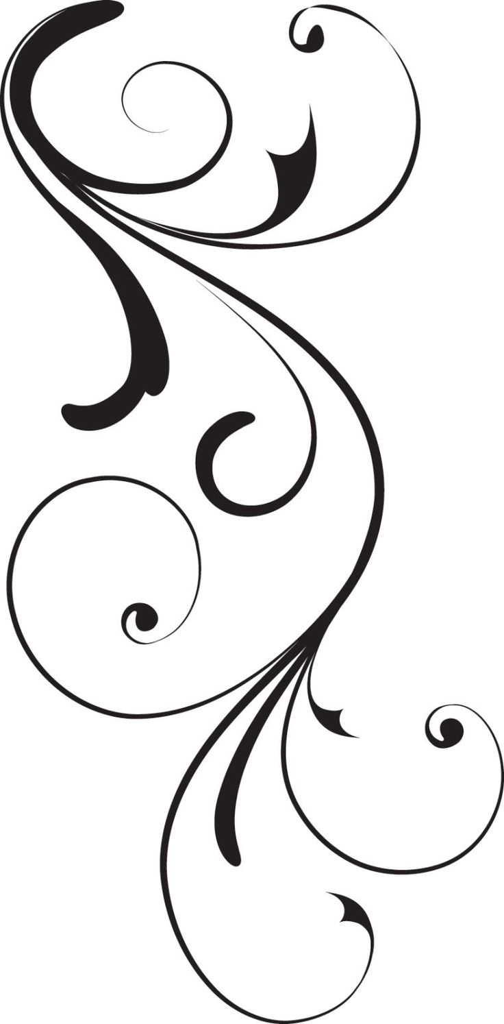 simple swirl vector - 640×1299