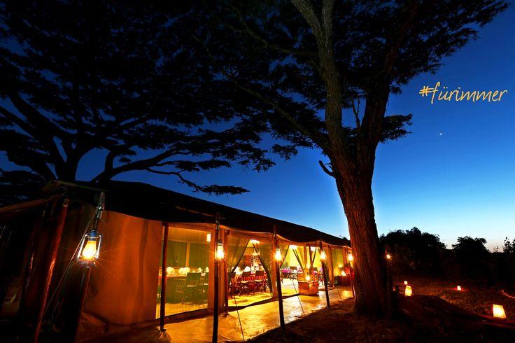 Flitterwochen Tansania – Ein komfortables Zelt unter den Sternen Afrikas und umgeben von den Lauten der Serengeti.