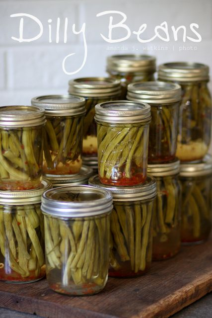 Dilly Beans  [Pickled Green Beans]   Crunchy, with a kick!