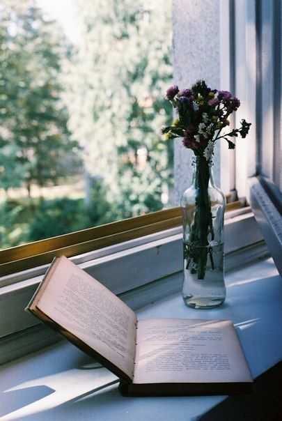 book, flowers, magic, morning, nice, old, reading, vintage