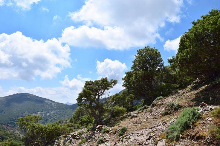 Landscape of Gennargentu mountains, Villagrande Strisaili, Ogliastra, Sardinia #enjoyogliastra