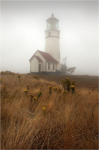 Oregon mist - lighthouse.I want to go here one day.Please check out my website thanks. www.photopix.co.nz