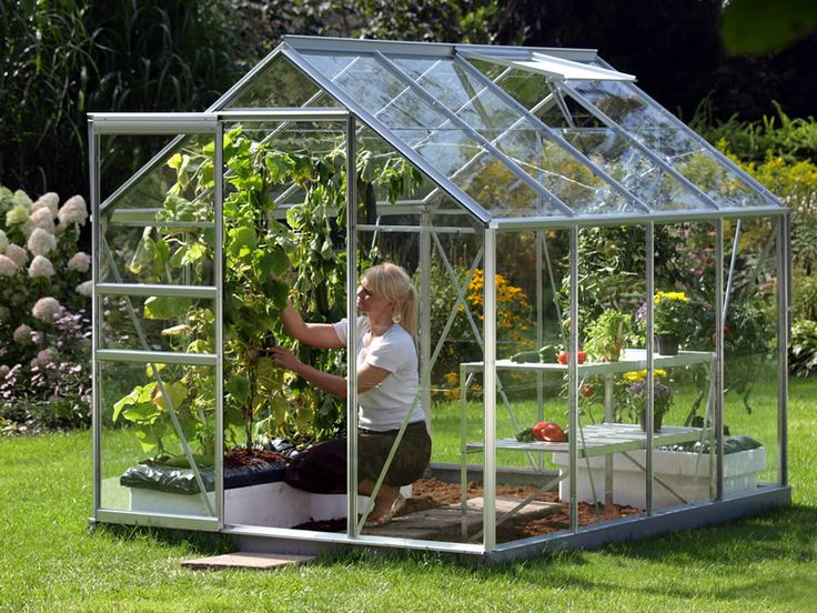 Vitavia Venus Greenhouse  8x6 £328.00  http://www.greenhousestores.co.uk/Vitavia-Venus-Silver-8x6-Greenhouse-3mm-Horticultural-Glazing.htm