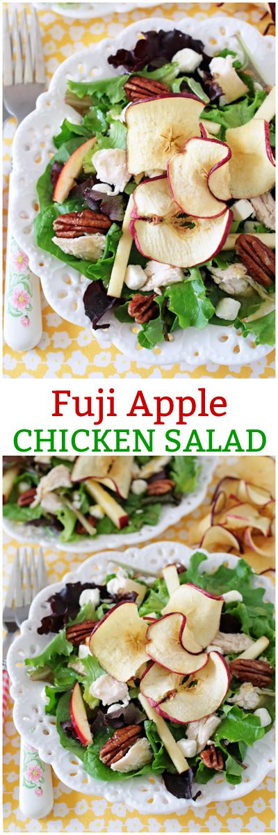 Homemade Fuji Apple Chicken Salad inspired by the Panera Bread bakery-cafe! One of the most delicious salads on Earth!