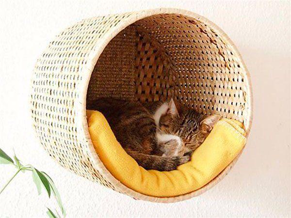 Seu bichinho amado merece ser bem acomodado numa cama confortável. Veja que dica vapt-vupt pra solucionar isso e decorar com esse objeto.